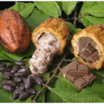 Commodities: Cacao