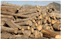 La madera como materia prima