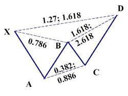 Patrón armónico Butterfly con sus proporciones