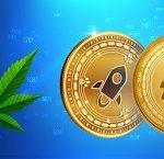 Nuevos productos del broker Avatrader - Indice Cannabis e Indice Crypto 10