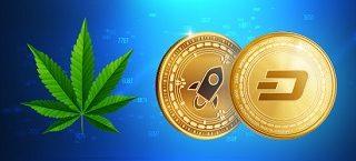 Indice Cannabis de Avatrade