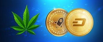 Nuevos productos del broker Avatrader – Indice Cannabis e Indice Crypto 10
