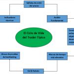 El ciclo de vida del trader típico - Las principales etapas