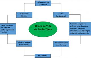 Ciclo de vida del trader típico